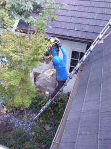 gutter cleaning brentwood