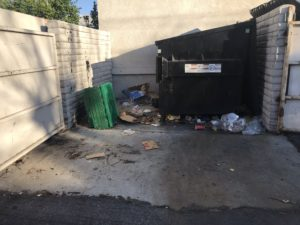 Dumpster Pad Pressure Washing